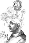mind-reader2
