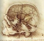 Rendering by Leonardo Da Vinci