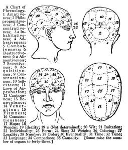 A 19th Century Phrenology Chart
